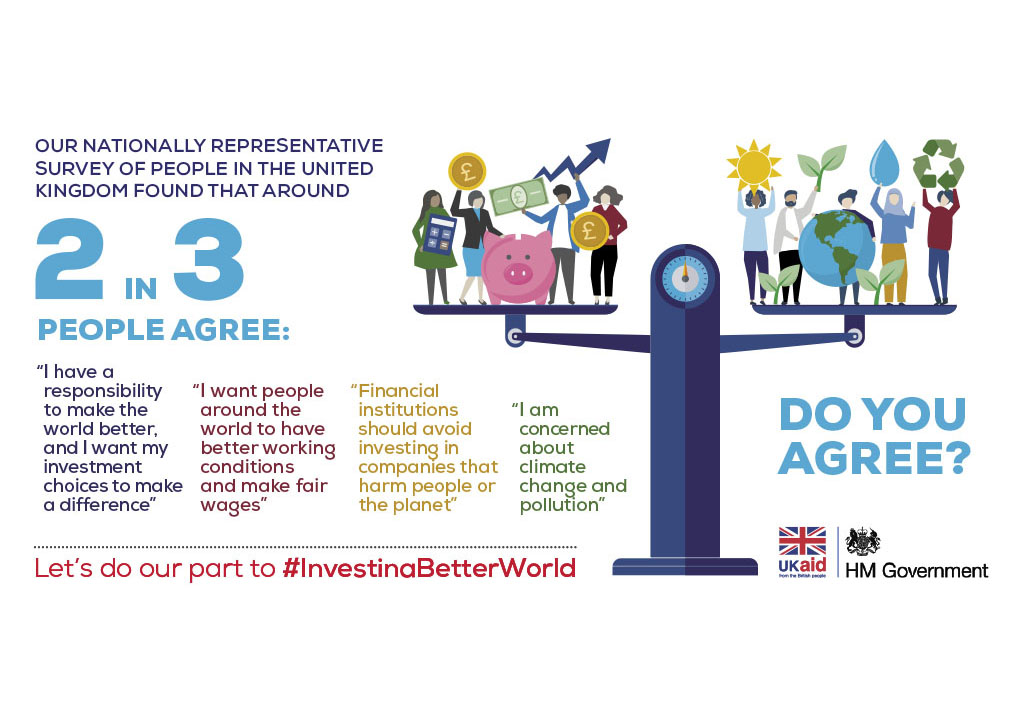 Investing in a better world survey results infographics